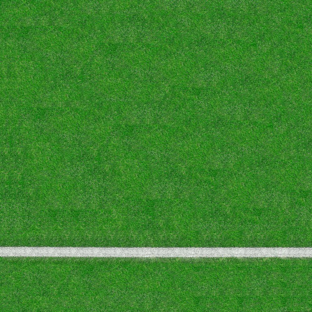 Grass Sports Field Floor Drop